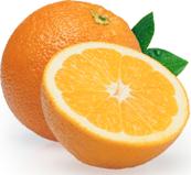 orangeland